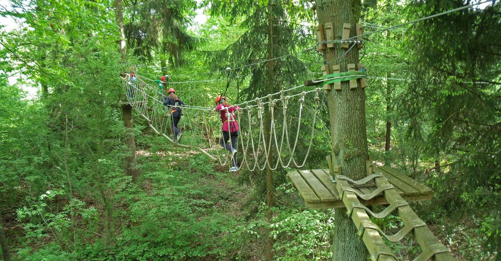 Dschungel-Parcours